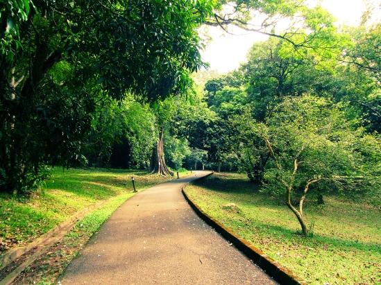 botanical92