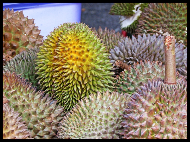 durianfest16