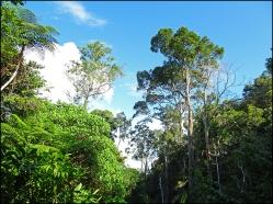 habitat05
