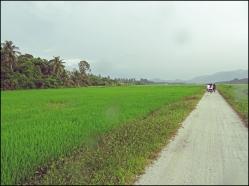 balikpulaucycle01