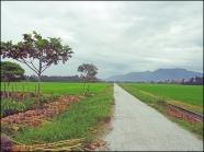 balikpulaucycle04