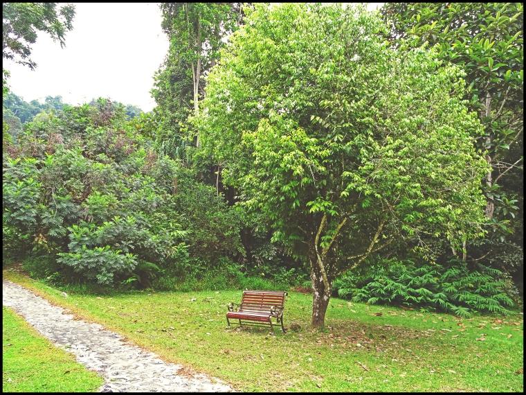 botanical137bench