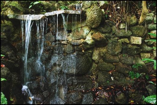 tropicalS13